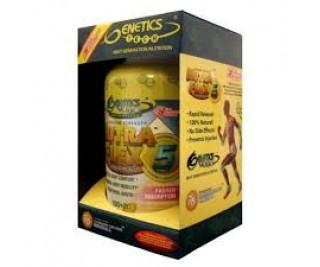 Nutraflex 5 com Ácido Hialurônico - Genetics 120 tabs