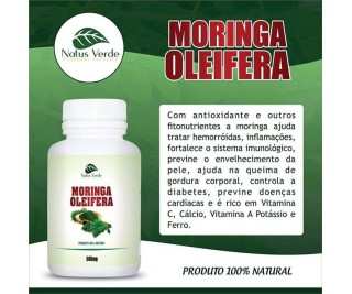 Moringa Oleifera - 500 mg - NATUS VERDE